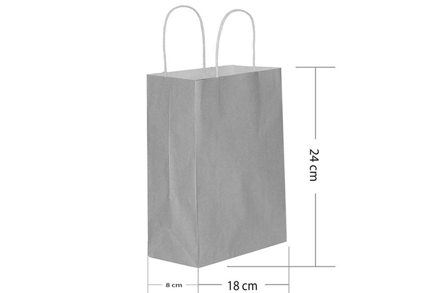 18x24 Büküm Saplı Gümüş Kağıt Çanta