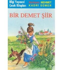 Bİr Demet Şiir Mehmet Kadri Sümer Bilgi Yayınevi