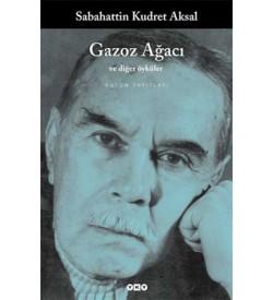 Gazoz Ağacı ve Diğer Öyküler Sabahattin Kudret Aksal Yapı Kredi Yayınları
